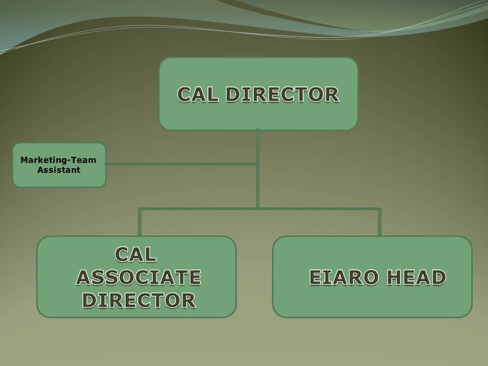 CAL ORG. CHART